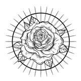 Señora del dolor Dedicación al corazón inmaculado de Virg bendecido ilustración del vector