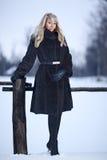 Señora del invierno Fotos de archivo libres de regalías