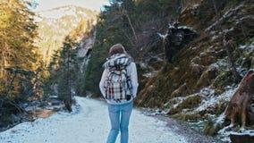 Señora delgada joven Walking en el camino con nieve en montañas Forest Slow Motion almacen de metraje de vídeo
