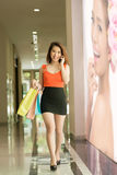 Señora elegante en las compras Foto de archivo