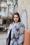 Señora elegante en un abrigo de pieles Imagen de archivo libre de regalías