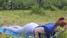 Señora en ejercicios de la yoga de las prácticas del parque, perro hacia abajo a la cobra ascendente, cuerpo fuerte almacen de video