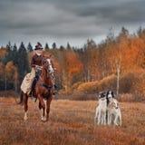 Señora en habbit del montar a caballo con los perros borzoy
