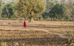 Señora en la trayectoria del pueblo Fotos de archivo
