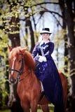 Señora en un caballo rojo Imagen de archivo libre de regalías