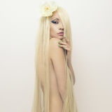 Señora hermosa con el pelo magnífico Imagenes de archivo