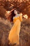 Señora hermosa en dres amarillos largos Imagen de archivo