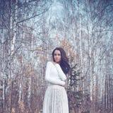 Señora hermosa en un bosque del abedul Fotos de archivo
