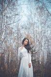 Señora hermosa en un bosque del abedul Fotografía de archivo