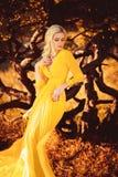 señora hermosa en un vestido amarillo largo Imágenes de archivo libres de regalías
