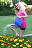 Señora hermosa Gardening Foto de archivo libre de regalías