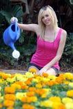 Señora hermosa Gardening Foto de archivo