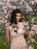 Señora hermosa joven atractiva, gozando de las flores del flor del ciruelo de la primavera imagen de archivo