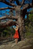 Señora hermosa y árbol poderoso fotos de archivo libres de regalías
