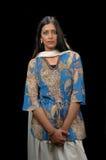Señora india en el att tradicional imagen de archivo