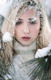Señora joven asperjada con nieve contra un fondo de pinos Imagen de archivo