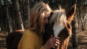 Señora joven con el pelo rizado hermoso strocking suavemente el caballo mientras que lo abraza en el prado de la cámara lenta de  almacen de metraje de vídeo
