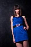 Señora joven fina de moda Imagen de archivo