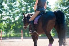 Señora joven que monta un caballo en la escuela ecuestre Proceso del entrenamiento Foto de archivo libre de regalías