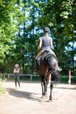 Señora joven que monta un caballo en la escuela ecuestre Proceso del entrenamiento Imagen de archivo libre de regalías