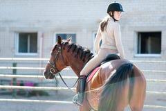 Señora joven que monta un lomo de caballo en la granja ecuestre Imagenes de archivo