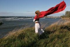 Señora joven ventosa Imagen de archivo