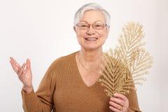 Señora mayor en humor de la Navidad Imágenes de archivo libres de regalías