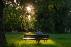 Señora mayor que se sienta en banco de parque imágenes de archivo libres de regalías