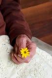 Señora mayor que sostiene una flor amarilla Foto de archivo libre de regalías