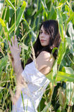 Señora morena asombrosa con el pelo rizado largo, entre campo de maíz Imagen de archivo libre de regalías