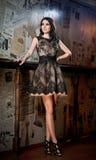 Señora morena hermosa en el vestido negro elegante del cordón que presenta en una escena del vintage Fotografía de archivo