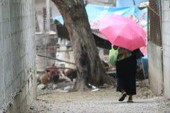 Señora que camina Imagen de archivo libre de regalías