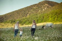 Señora rubia joven dos en vaqueros y la camisa más undervest blanca que camina a través del prado de la manzanilla de la margarit Fotografía de archivo