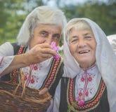 Señoras búlgaras que escogen los pétalos color de rosa fotografía de archivo libre de regalías
