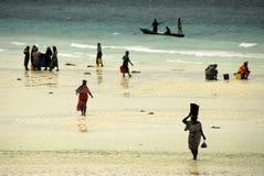 Señoras del suajili, isla de Zanzibar Imagen de archivo libre de regalías