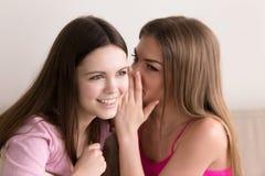 Señoras jovenes que susurran en rumores y chismes del oído Imagen de archivo