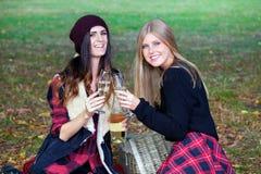 Señoras jovenes que tienen comida campestre en un parque Imágenes de archivo libres de regalías