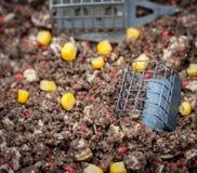 Señuelo del alimentador de la pesca en groundbait mezclado Foto de archivo