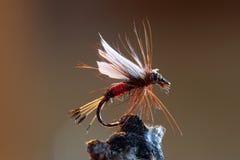 Señuelo rojo de la pesca con mosca foto de archivo