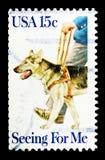 Se ögonhundkapplöpning: Se för mig, serie, circa 1979 Fotografering för Bildbyråer
