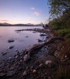 Se över Loch Lomond in mot Ben Lomond i aftonen Arkivbild