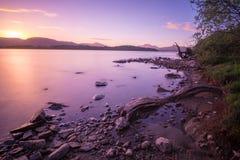 Se över Loch Lomond in mot Ben Lomond i aftonen Arkivfoton
