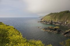 Se över munnen av den Cadgwith lilla viken, Cornwall, England Arkivbild