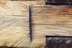Se av antikt trä av ljus färg i en trävägg Royaltyfri Foto