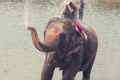 Se baigner d'éléphant Photos libres de droits