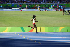 Se calçou o Steeplechaser etíope Etenesh Diro Foto de Stock