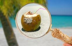 Se concentrer dedans sur une boisson tropicale Photo libre de droits