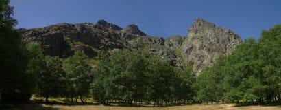 Se dégageant parmi des arbres au ` Ametade Serra da Estrela, Portugal de Covao d Image stock