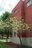 Se den George Washington University universitetsområdet Arkivfoton