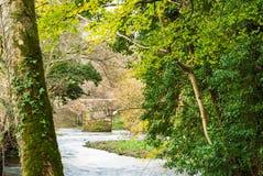 Se den Respryn bron från flodbanken Royaltyfria Bilder